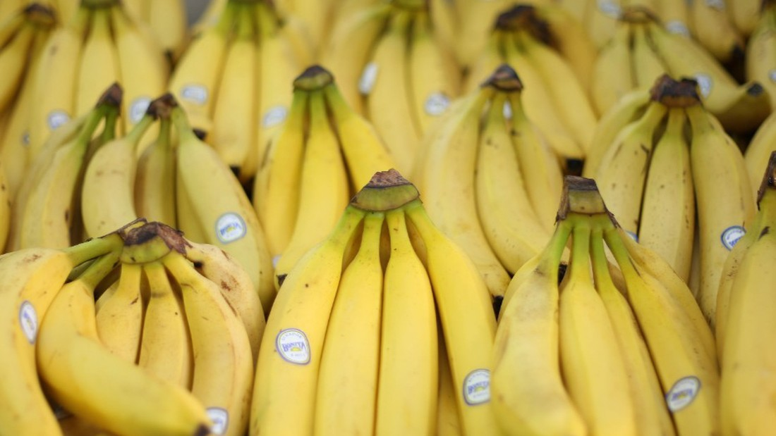 Can science stop the looming banana extinction?
