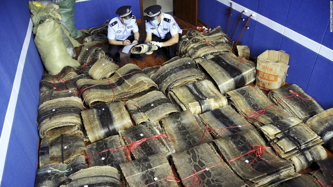 Police officers in Linyi, China, register bundles of seized python skins on Friday, July 17.