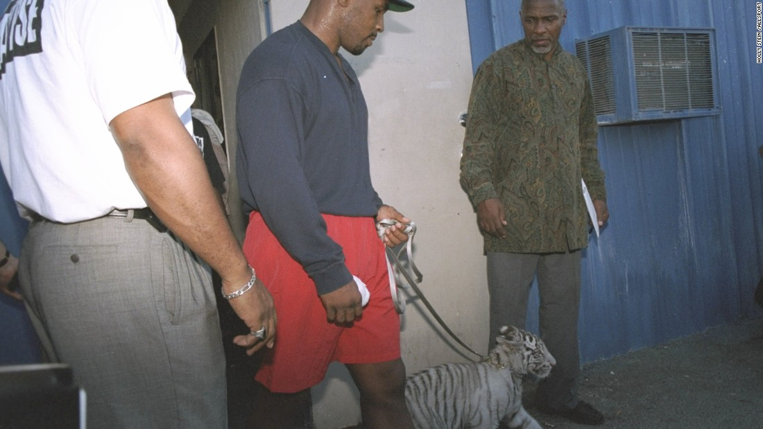 Mike Tyson is accompanied by his pet tiger cub as he enters his workout location in Las Vegas, Nevada in 1995.