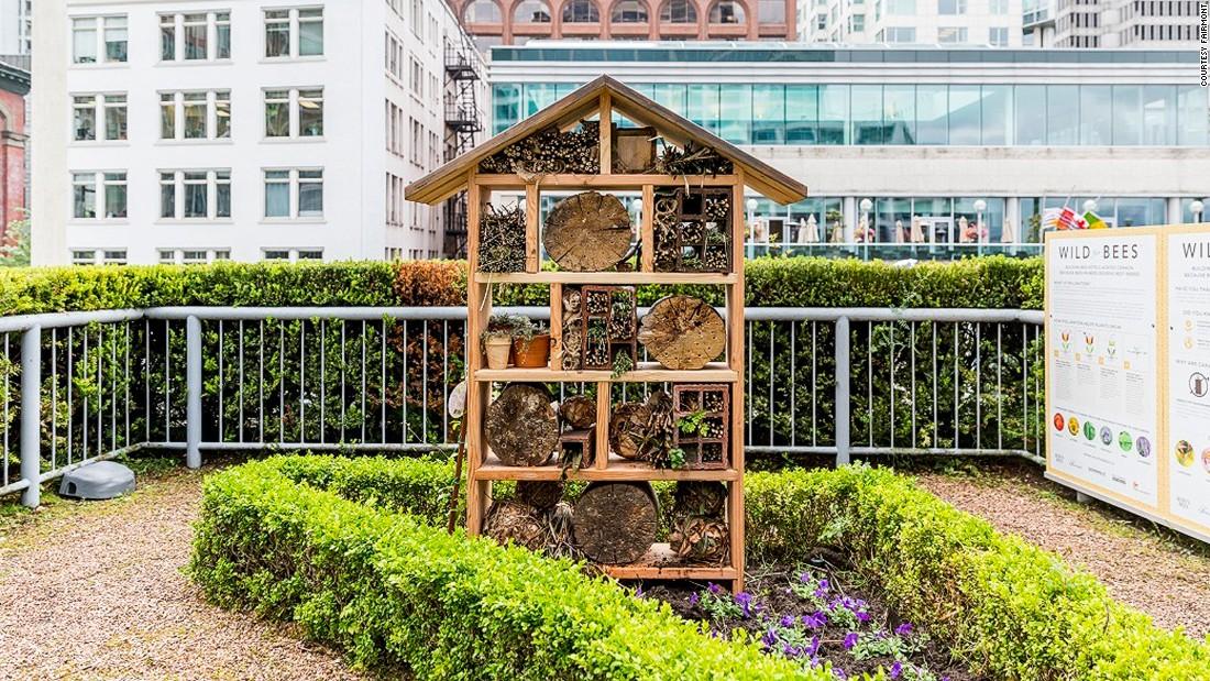 5 Luxury Hotels That Do Beekeeping | CNN Travel