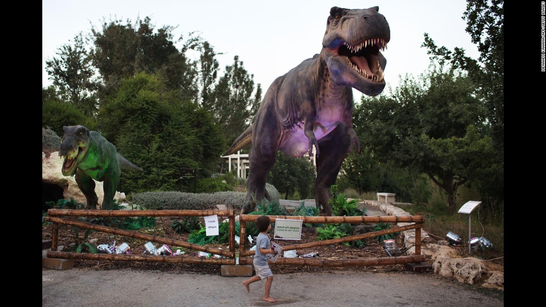 A child walks past a replica of a Tyrannosaurus rex during a visit to the Jerusalem Botanical Gardens on Monday, July 27.