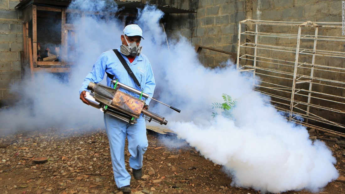 The main control measures for dengue to date have been to reduce the numbers of mosquitoes by large-scale spraying of insecticides. The chemicals have been deployed in both residential and public spaces in a mass culling of the insects spreading the disease.