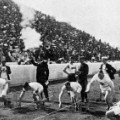 1904 olympic games