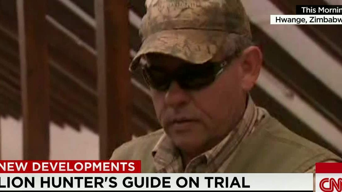 Trial postponed for hunter guide accused in Cecil the lion's death