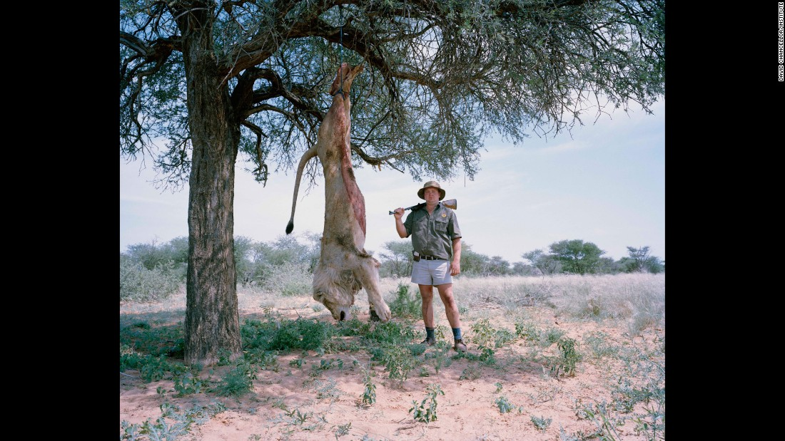 Untitled professional hunter with trophy lion, South Africa.