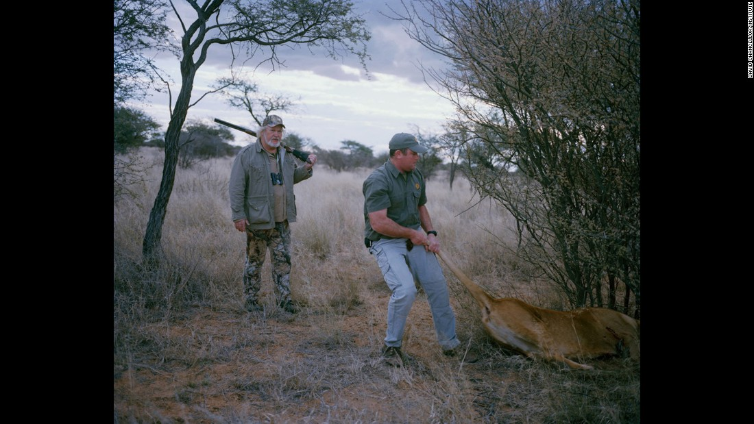 Untitled hunters and lioness, South Africa.