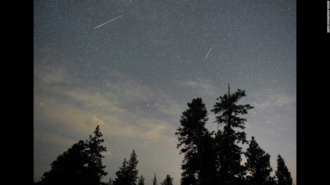A pair of meteors are visible in the sky above desert pine trees in the Spring Mountains National Recreation Area in Nevada on August 13.