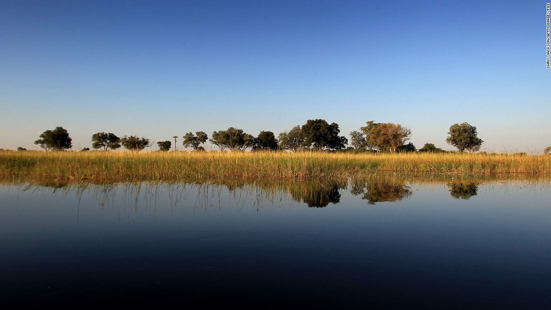 The tranquil waters of the Okavango Delta are enticing to animals and tourists alike.