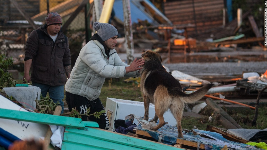 A man stops to pet a dog in Concon on September 17. About 1 million people evacuated the coastal region. Authorities said at least 10 people died and one person is missing.