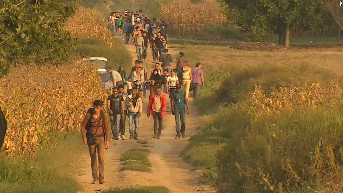 Migrant crisis: Refugees walk final miles through Hungary