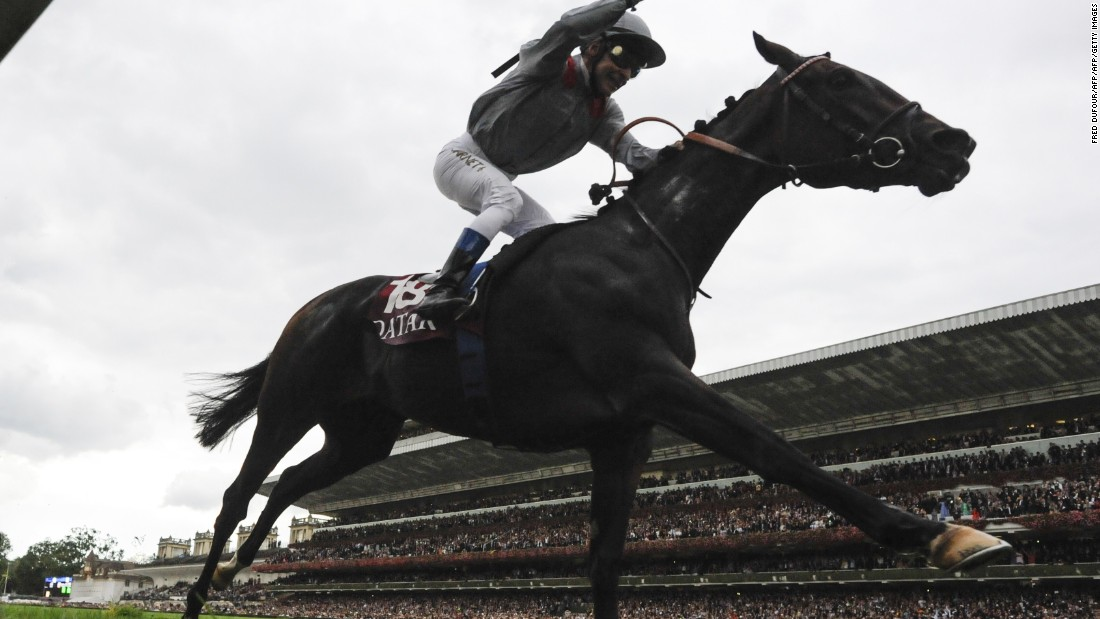 "Treve and jockey Thierry Jarnet made it back-to-back wins after winning the ""Arc"" in 2013 and last year (pictured). <br />"