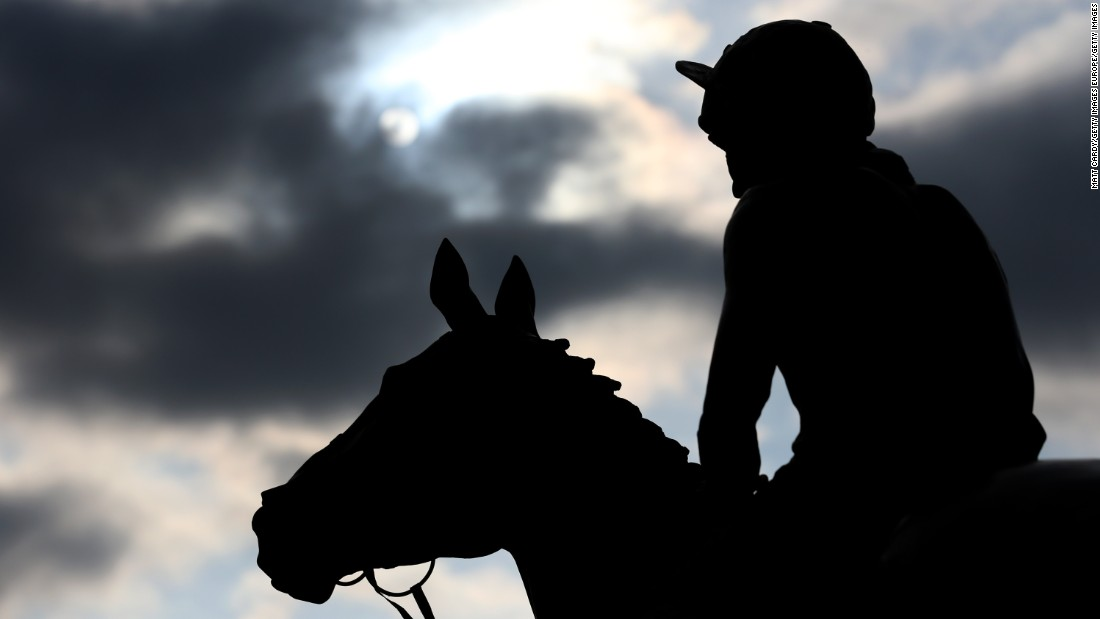 Dawn Run was the most successful race mare in National Hunt history, capped with victory at the Cheltenham Gold Cup. When she broke her neck racing, it made front page news and a statue (above) was erected in her memory at Cheltenham.
