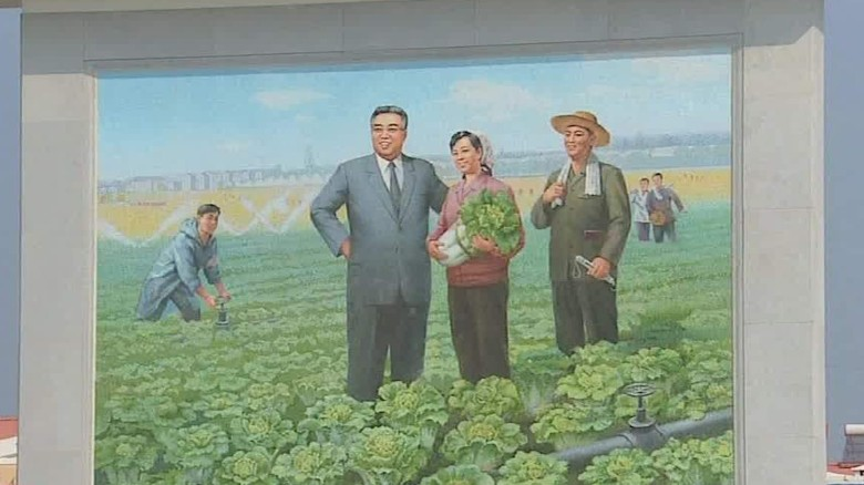 Meet North Korea's most famous farmer
