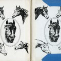 11 cnnphotos discarded library books RESTRICTED