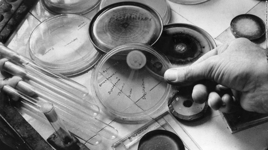 The discovery of penicillin is considered a landmark in medical history, marking the beginning of antibiotic use. In 1928, Englishman Alexander Fleming discovered a strain of mold on some contaminated petri dishes: It was penicillin. It would be another decade before scientists understood the full potential of this mold. The challenge became scaling up production. American scientists lucked out when they found a strain of penicillin on a moldy cantaloupe at a Peoria, Illinois, grocery store. It grew 200 times as much as the strain Fleming found. Thanks to penicillin, the mortality rate of bacterial pneumonia fell from 18% during WWI to less than 1% in WWII.