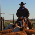 waggoner cowboy cattle
