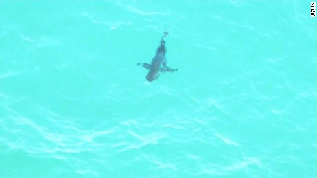 Skyforce stumbled up a school of sharks about 50 yards offshore from Miami beach in the area between 45th and 50th Street (more of less).  Skyforce aerials over the sharks and proximity to swimmers starting at tc 17:04:50