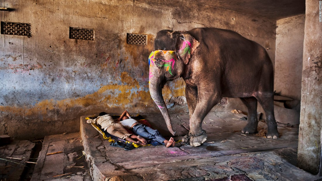 The Magnum photographer has a special talent for capturing people's everyday lives with great compassion. <br /><br />Here, Mahouts -- people who ride elephants professionally -- are depicted sleeping beside their giant, brightly painted animal.