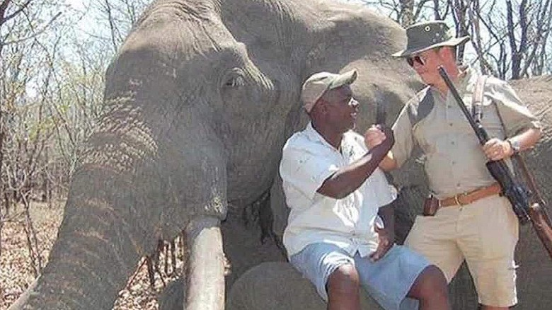 Huge elephant killing sparks outrage