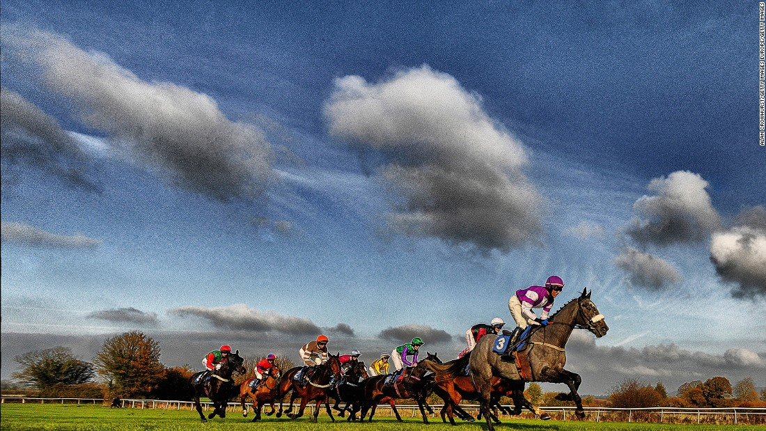 A general view as runners make their way down the straight at Wincanton racecourse in November 2014. All of these images were taken by photographer Alan Crowhurst, with many of them processed using digital filters.