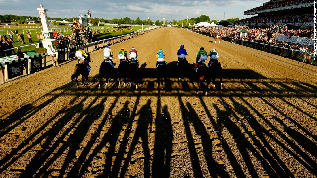 JUNE 06 2015: The stakes couldn't be higher for American Pharoah as the gates open to start the Belmont Stakes in Elmont, New York.
