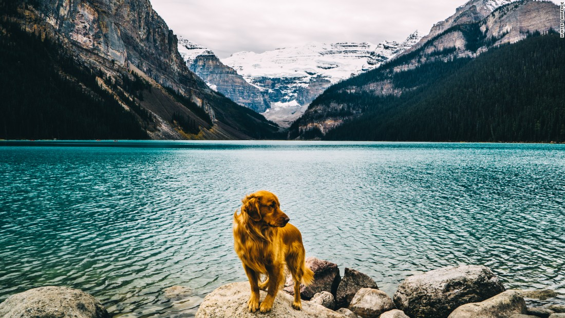 The four-year-old golden retriever is the star of these images, shot by his owner Hunter Lawrence. The professional photographer says he had always promised he would never put a photo of Aspen on Instagram.