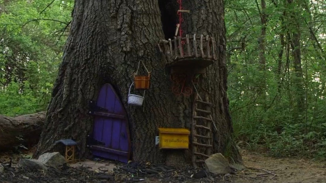 The gnomist a big beautiful act of kindness cnn video - Home and garden show overland park ...