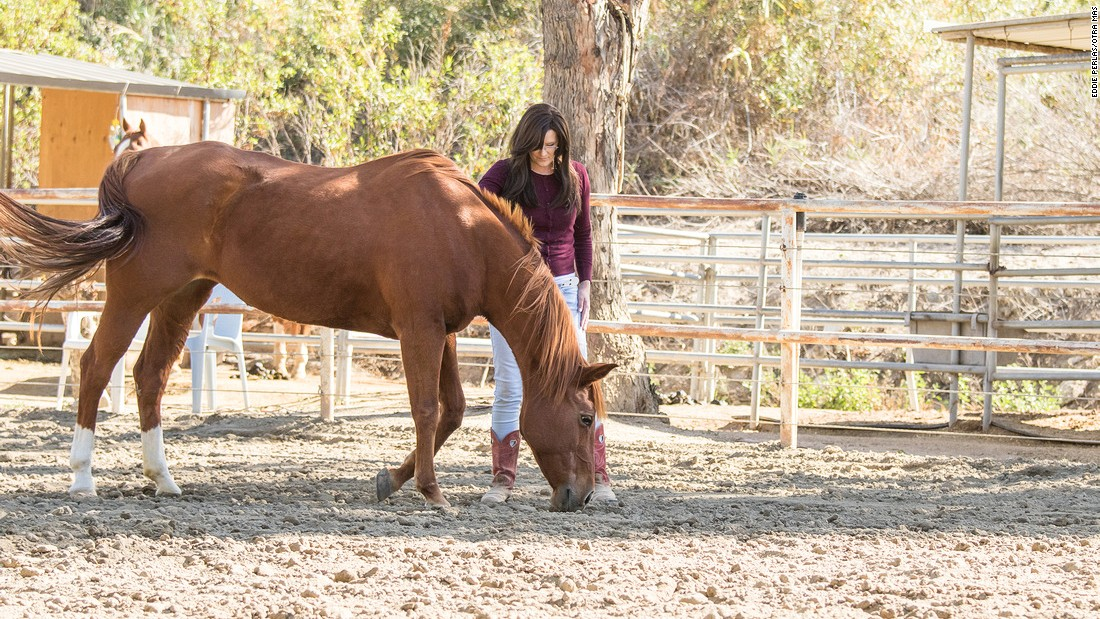 When horses begin responding to a person, this can help a patient identify and confront their issues, Caddes explains.