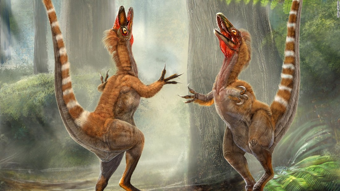 Why do birds have beaks and not teeth? This dino may have the answer