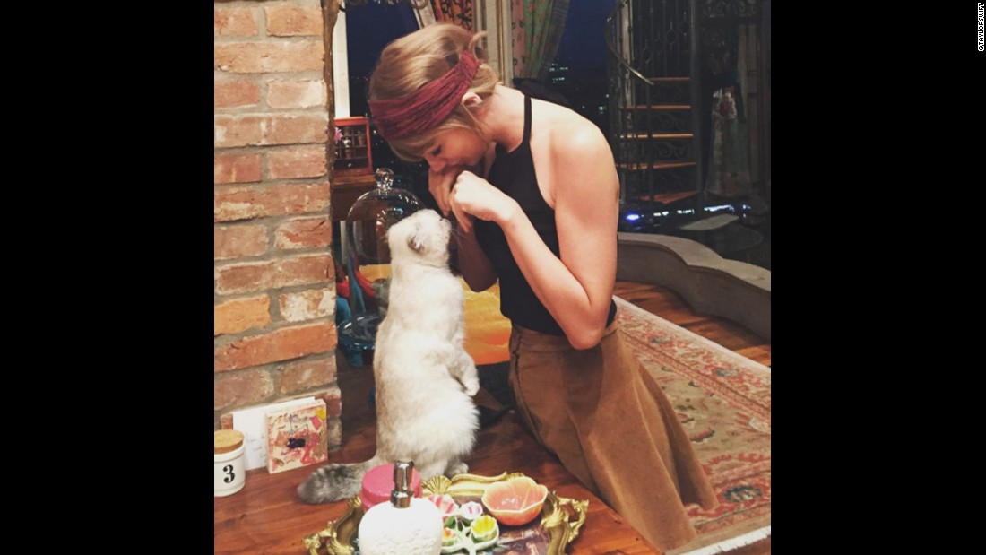 "This photo of Swift and <a href=""https://www.instagram.com/p/7WY679jvC3/"" target=""_blank"">her cat Meredith</a> received 2.3 million likes."