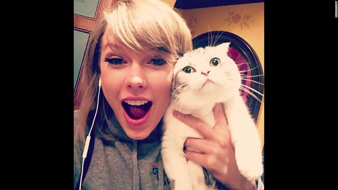 "Swift's cat Meredith <a href=""https://www.instagram.com/p/8bXWVHjvGG/"" target=""_blank"">makes another appearance on Instagram,</a> with Swift proclaiming, ""Meredith is allergic to joy."""