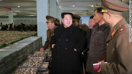 An undated image released from North Korea's KCNA news agency on November 23, 2015 shows North Korean leader Kim Jong Un  visiting an army Fishery Station.