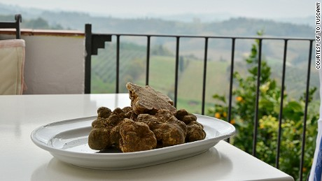 Images related to San Miniato Truffle Festival 2015 and a CNN truffle-hunting trip.
