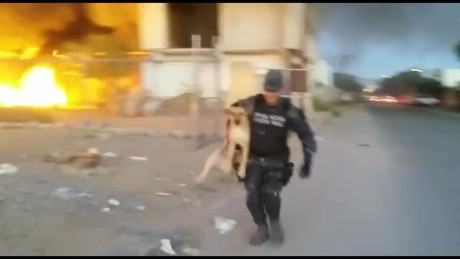 cnnee vo rec mexican police saves a dog from a fire_00002513.jpg