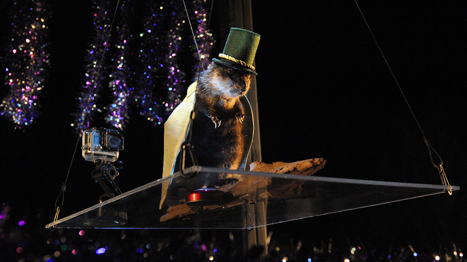 Things to do on New Year's Eve: Quirky drops around USA