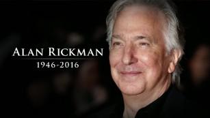 actor rickman harry potter movies