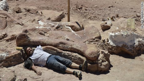 Femur bone of dinosaur discovered in Patagonia.
