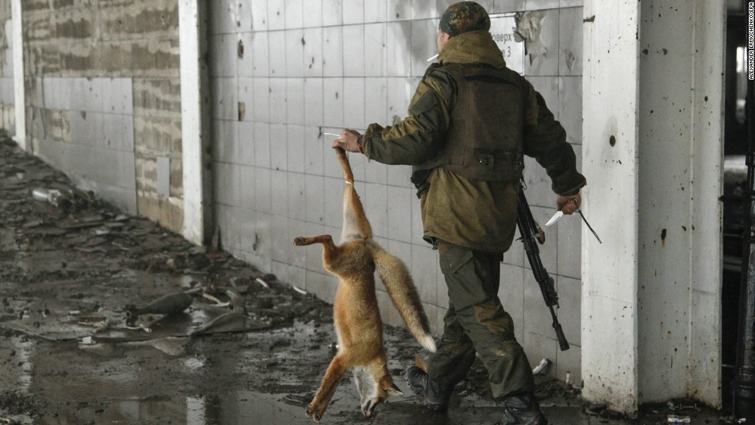 A pro-Russian rebel carries a fox that was caught in Donetsk, Ukraine, on Tuesday, January 12.