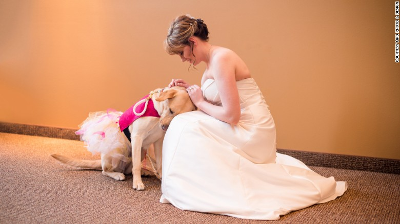 Touching photo of bride and her service dog goes viral