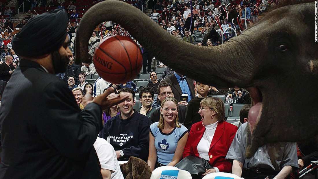 Toronto Raptors superfan Nav Bhatia receives the game ball from Piccolo the Elephant as part of the annual Baisakhi Day celebration of the Sikh New Year hosted by the team at the Air Canada Centre.
