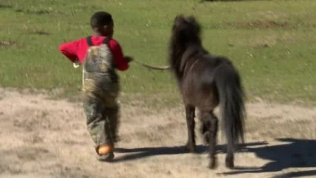 pony horse wedding louisiana pkg_00012213.jpg