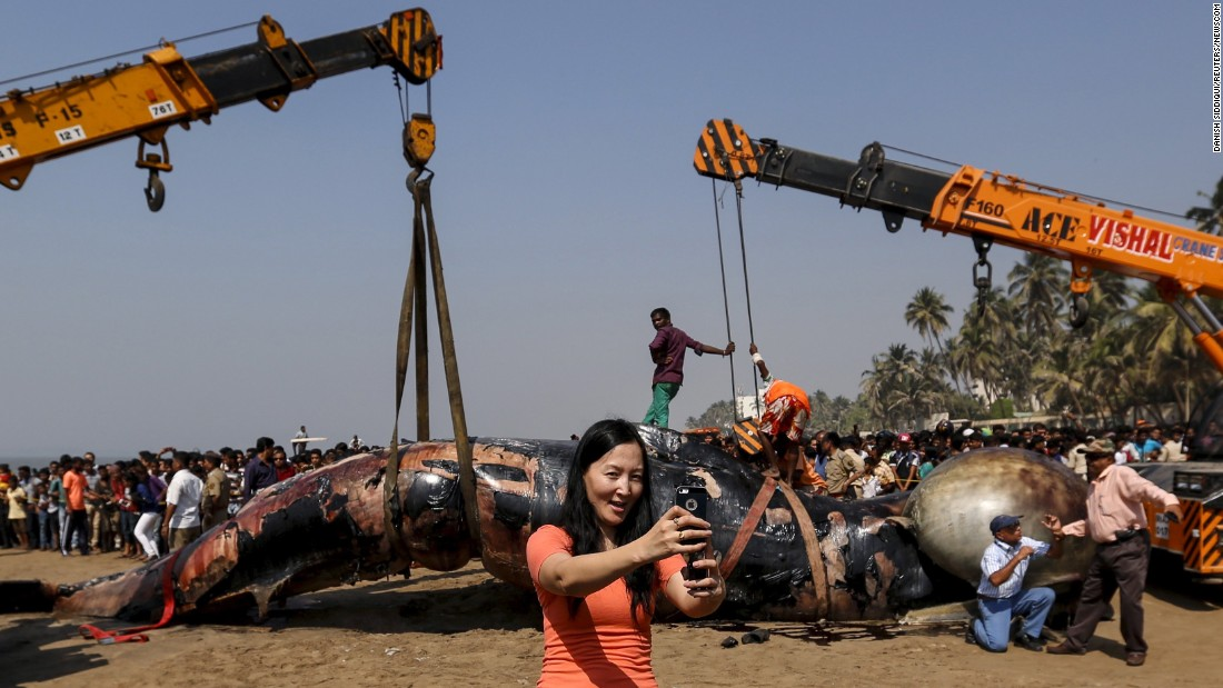 A tourist takes a selfie in Mumbai, India, as a dead whale's carcass is lifted away on Friday, January 29.