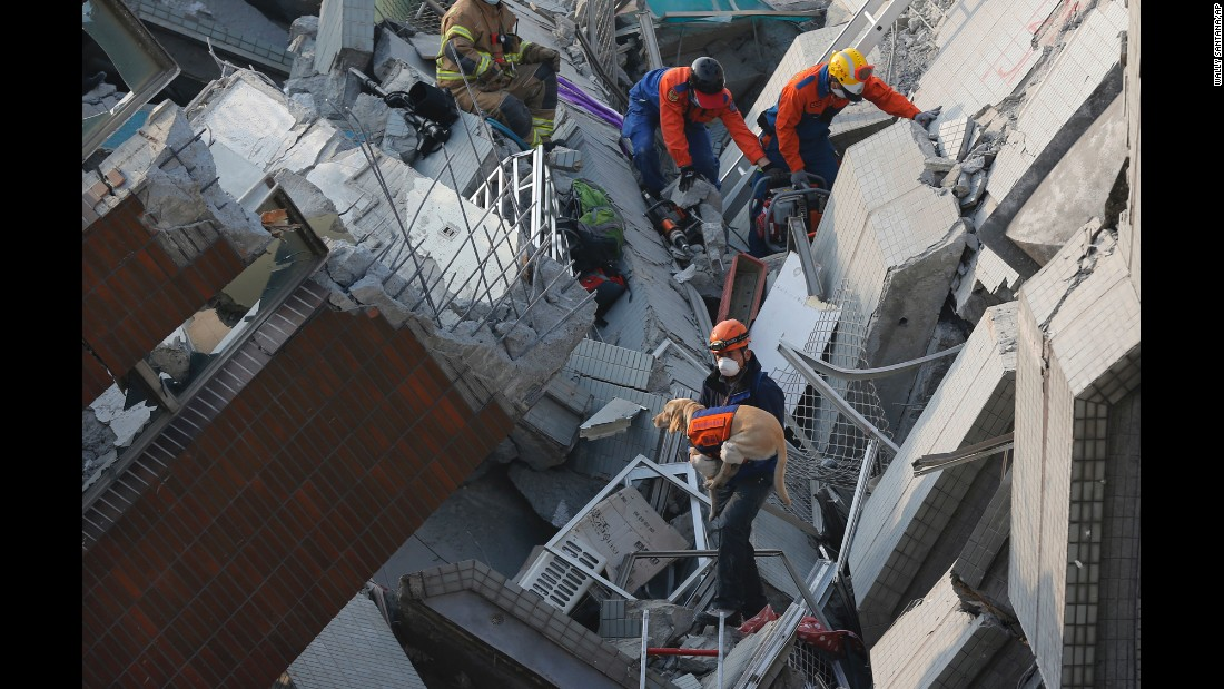 A canine rescue team searches for the missing in Tainan.