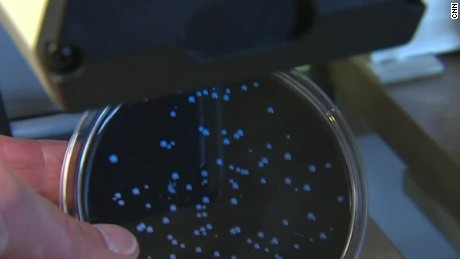Whistleblower: State ended Legionnaires' investigation