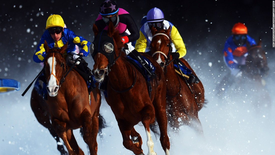 "With 500,000 Swiss francs ($501,000) on offer in total as prize money, White Turf surpasses all other jackpots when it comes to Swiss racing. The ""Gubelin"" event alone, taking place on the final Sunday, boasts a prize purse of 111,111 Swiss francs."