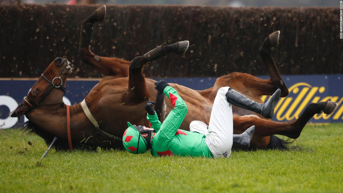 Tom Bellamy and his horse, Devil to Pay, fall during a steeplechase race in Sunbury, England, on Friday, February 12.