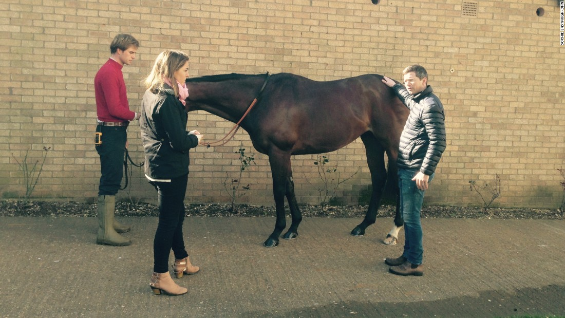 "Pictured at his Newmarket stables, Varian gets to know each of his horses ""like children"" to select the right one for each race. He looks for ""a strong neck and shoulder, well proportioned limbs, a deep middle and a well-developed backside."""
