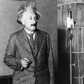 albert einstein 20th century genius essay The number one scientist was albert einstein  the cause of einstein's genius einstein's remains were  admired person of the 20th century in.