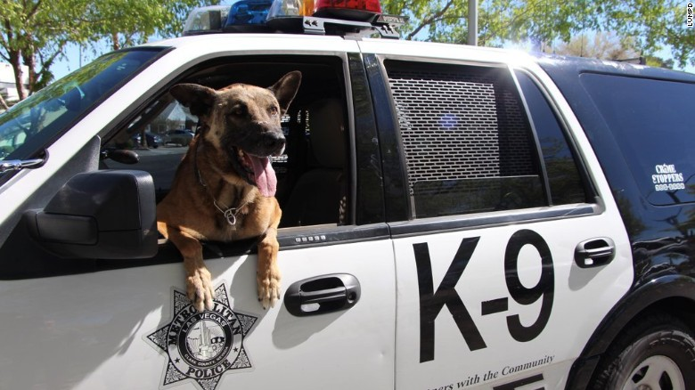 Las Vegas gunfire leaves two people, police dog dead