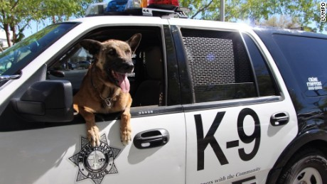 Las Vegas Police dog K-9 Nicky was stabbed during a standoff last month